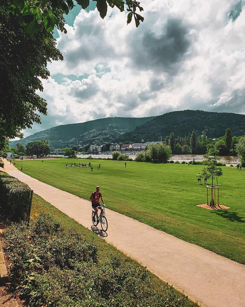 Neckarwiese-Heidelberg